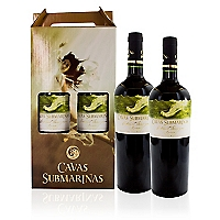 Pack 2 Botellas de Vino 13�