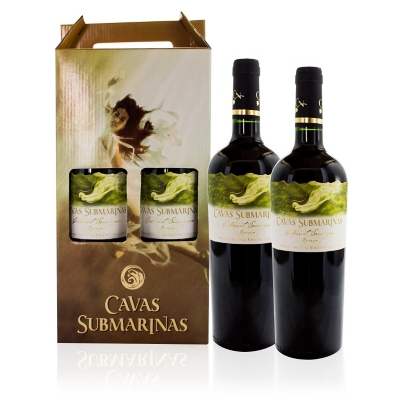 Pack 2 Botellas de Vino 13°