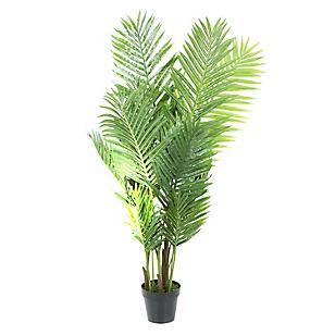 Dw-Arbusto Palmas Areca 120Cms