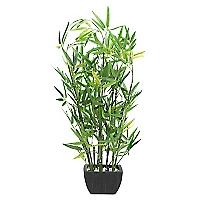 Pote Bamboo Core Plantas