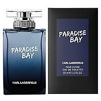 Paradise Bay Men EDT 100 ml