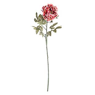Canasto Peonia Core Flores