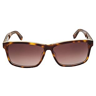 Anteojos de Sol Mujer F3330124