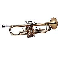 Trompeta Dorada LTD01