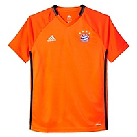 Camiseta Bayern Munich Training Youth