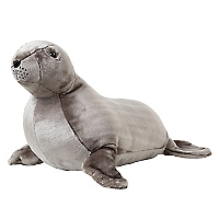 Sea Lion - Plush
