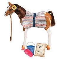 Pony Pinto Paso