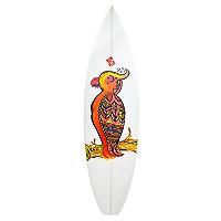 Tabla de Surf  61