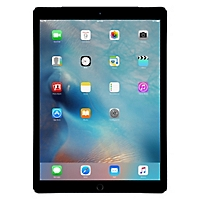 iPad WiFi+4G 256GB Gris 12,9
