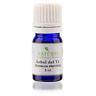 Aceite Esencial Hebbd Árbol del Té
