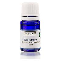 Aceite Esencial Hebbd Ravintsara