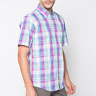 Camisa Cuello Button Down Regular