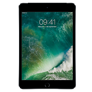 iPad Mini Retina 32GB Wi-Fi  4G Space Gray