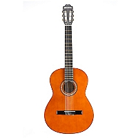Guitarra Clásica con Funda