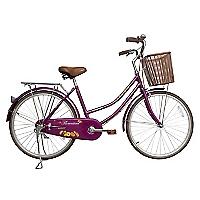 Bicicleta Aro 24 Paseo Flor Morada