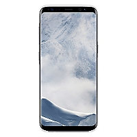 S8 Clear Cover Silver