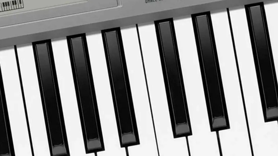 61 teclas similares a las de un piano