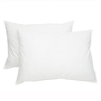 Set 2 Almohadas Rectangulares