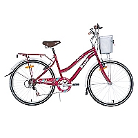 Bicicleta Aro 24 City Life Burdeo