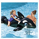 Orca inflable grande