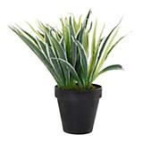 Plantín verde 30 cm