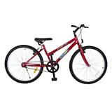 Bicicleta 24 MTB 24