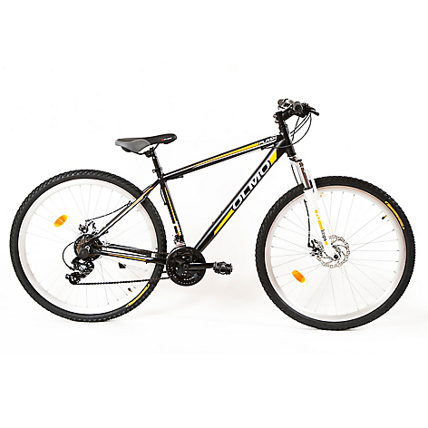 Bicicleta Flash R29