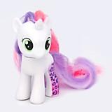 Pony Wild Rainbow
