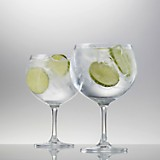 Set 6 Copas Gin Tonic Bar Special