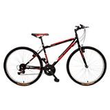 Bicicleta MTB 21V Shimano Rin 26 pulgadas