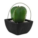 Pot Cactus Cuadrado 14x14x20 cm