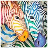 Cuadro Color Cebras