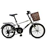 Bicicleta New York Vintage Rin 20 pulgadas