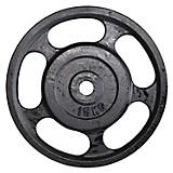 Disco Estándar 15 kg 1P con Agarre
