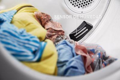 Sensor avanzado que mide niveles de humedad.