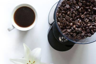 molino café oster3