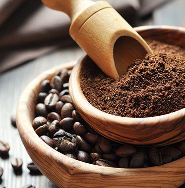 molino café oster5