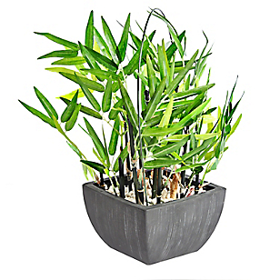 Maceta bamboo 35cm