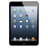 iPad Mini WiFi  16GB Space Gray