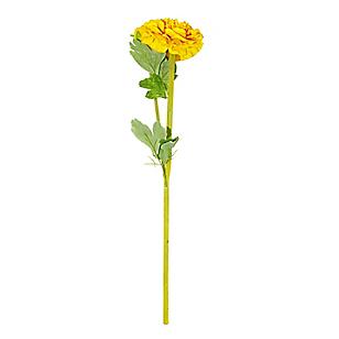 Flor Ranunculus Amarilla