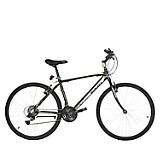 Bicicleta TractionXT15.0H Gris