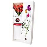 Caja Nueva Edición + 12 Tulipanes