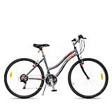 Bicicleta Paris Aro 26