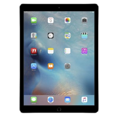Apple iPad Pro Wifi 32 GB Gris Espacial