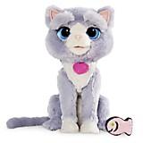 Mascota Gato Bootsie