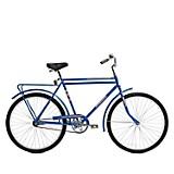 Bicicleta Cargo Azul