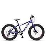 Bicicleta Alaska Aro 24
