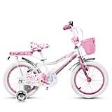 Bicicleta Angela Aro 16