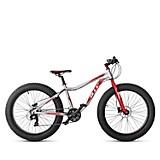 Bicicleta Unisex Fat Bike Dune 26