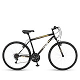 Bicicleta Andes 10 Aro 26